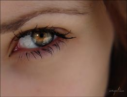 Bleak by groby