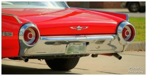 The Bumper and Tailights On A 1962  Thunderbird by TheMan268