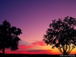 Sunset 4.0 by TabithaS-Photography