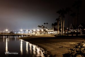 Coronado Ferry Landing by Milton-Andrews