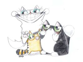 Funny cats funny faces by KingZoidLord