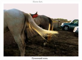horse fart by deathswife666