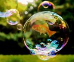 fish in the bubble by HeinrichaHimmlerina