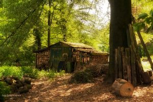 The cabin in the woods by nomad666