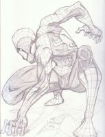 Spidey and his amazingly odd pose by MikeVanOrden