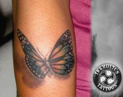 Butterfly by ketology