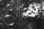 Film - XXVI - Bubbles by Picture-Bandit