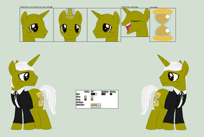 1st Doctor Whooves Ref. Sheet by PrimeFighterQue