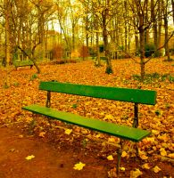 Le banc by Fluppin