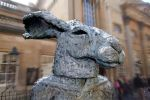 Lady Hare by Clangston
