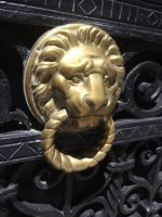 Lions Argentina. Buenos Aires ...2 by DemonSD