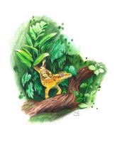 Crested Gecko by Sabre-Art
