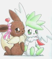 Eevee and Shaymin by Togechu