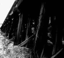 Long Black Train by Veni-Scripsi-Vici