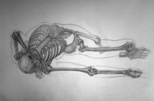 Figure drawing skeleton by reinisgailitis