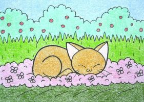 Cute orange cat ACEO by PeachPodHandmade
