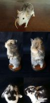 ETSY SALE - Coupon code by DeerfishTaxidermy