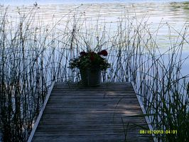 looking out onto the lake by bixth
