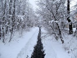 Winter in Poland by cremowa
