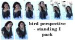bp: standing I pack by syccas-stock