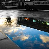 Puddle of Life 1 by umboody
