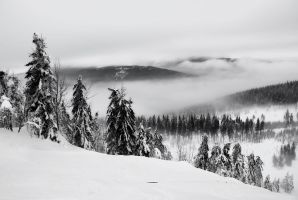 cold land by stg123