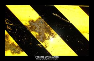 Proceed With Caution by MIKEYV13