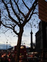 A Tree and Nelson by PointsOfArticulation