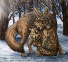 Coyote, Margay by SheltieWolf