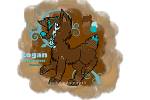 Logan Ref Sheet by L-A-B-R-A-D-O-R