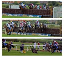 steeplechase by ThomasBell