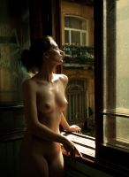 The window by AlexeiEv
