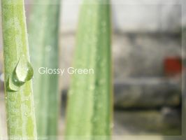 Glossy Green by Rely
