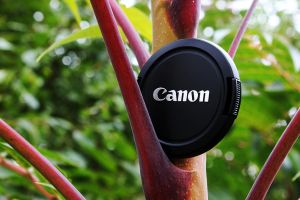 Canon by Solco90
