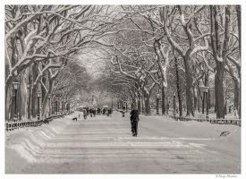 Winter 2011 in Central park by Tomoji-ized