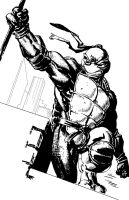 Donatello by PhillieCheesie
