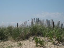 sand dunes and fence stock by Moon-WillowStock