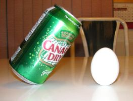 My Can and Egg Challenge by jHYtse