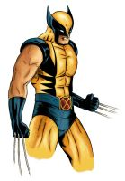 Wolverine by Cantilux