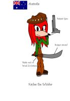 Assassin's Creed ref sheet: Kaylee the Echidna by Doggshort2