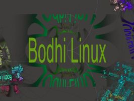 Bodhi Linux by Theophobus