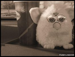 Furby by bulletwings