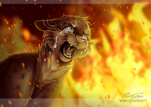 Ashfur ~ 'Burn' by PaintedSerenity