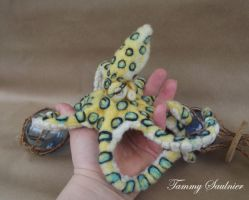Blu-ringed octopus by Tammysoul