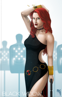 Dress to Kill: Black Widow by FuShark