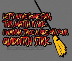 quidditch stick. by xmmarauder