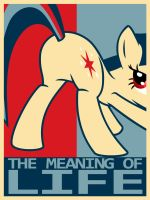 The Meaning Of Life by dotRIM