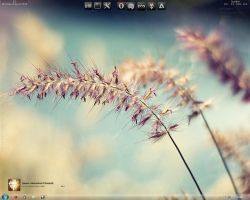 Nature Desktop 23-08-10 by ixdvc