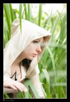 Assasins creed 2 by NeonRainbowGirl