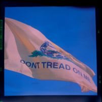 Dont Tread On Me II by hfootball